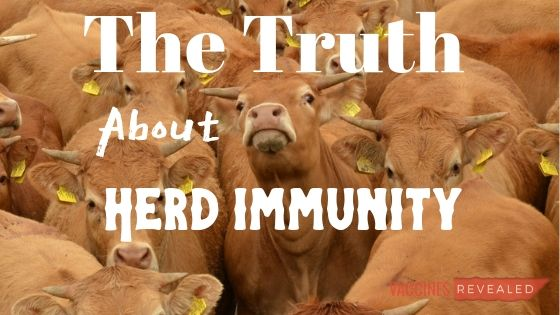 The Truth About Herd Immunity